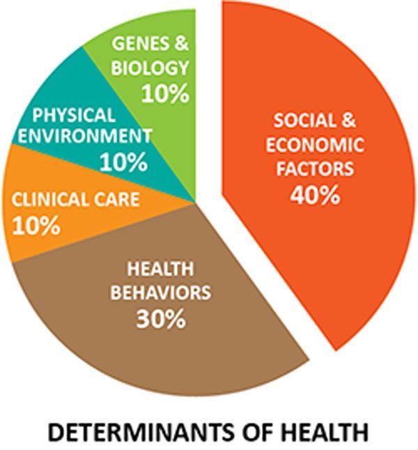 determinants of health pie chart